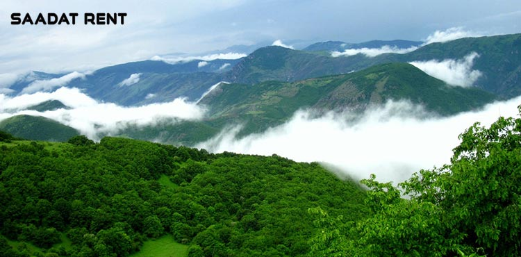 You can't believe these forests are in Iran