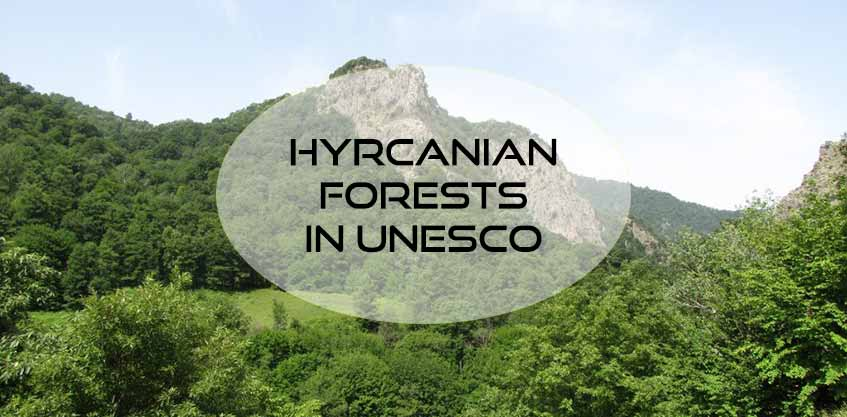 Hyrcanian forests are registered in UNESCO World heritage Site!